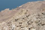 Jordan Dead Sea 2013 2635.jpg