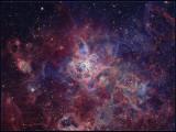 NGC 2070 - The Tarantula nebula after processing