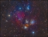 NGC 2170 complex
