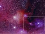 Antares w 480mm frame
