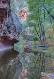 West Fork Reflection
