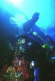 Diving the Yolanda wreck Ras Mohamed