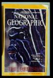 NatGeo Cover Story Nov. 1983