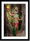 In between banyan trees