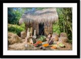 Lovely village vendor