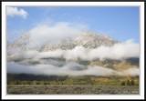 Grand Teton Landscapes