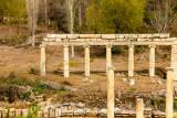 Pillars Aphrodisias.jpg