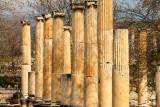 Row of pillars Aphrodisias.jpg