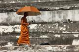 Monk Ayuthaya 01.jpg