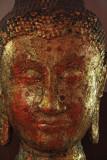 Goldleaf face.jpg