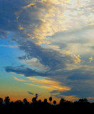 SunsetVert031014crop3.JPG
