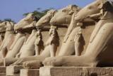 BEST OF EGYPTE