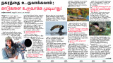 @Dinamalar -Tamil daily newspaper