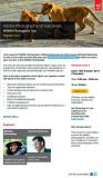 Adobe-webinar