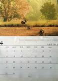 WWF-Calendar-2012