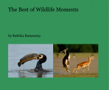 The best of wildlife moments new photo book