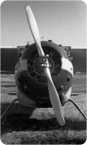 A Classic Cessna