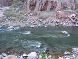 Arkansas River at Bottom of Royal Gorge