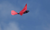 NPMAC 9 Mar 2015, Glen flying my F/T Snowball & ornithopter in Levin
