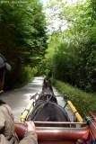 Molly - Jaunting Cart