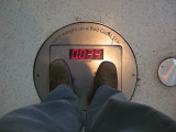My weight if on a giant red star (AMNH, New York) (2012)