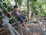 Bronx Zoo spider-rope