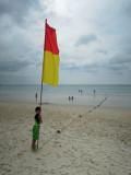 Flag dominion