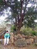 Khajuraho eastern complex