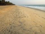 Beach in Kerala looking south