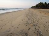 Beach in Kerala looking north