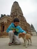 Khajuraho puppy