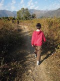 Meadow hike