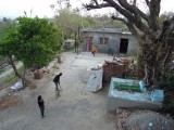 Playing cricket with the neighbors