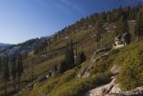 meadow at Glacier Point