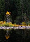 Yosemite National Park, October 2013