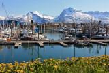 Valdez, one of the prettiest towns in Alaska