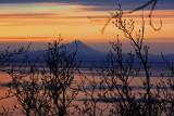 Cook Inlet, Starisky Campground