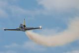 Baltic Bees (Aero L-39 Albatros)
