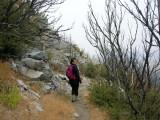Mount Lowe Trail