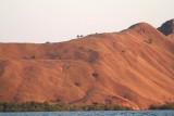 Barren islands