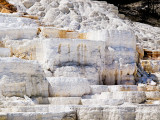 Mammoth Hot Springs Terraces_3