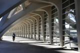 Calatrava's City of Art and Sciences