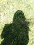 Self-portrait on a windy day