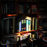 The low sun hits the bookcase