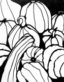 Pumpkins Sketch