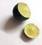 Lime- life