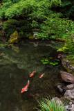 REJ_2675 V Blend.jpg