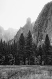 Yosemite Foggy Spire.jpg