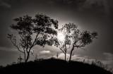 Moonrise over Nicholas Flats
