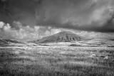 Mauna Kea cinder cone